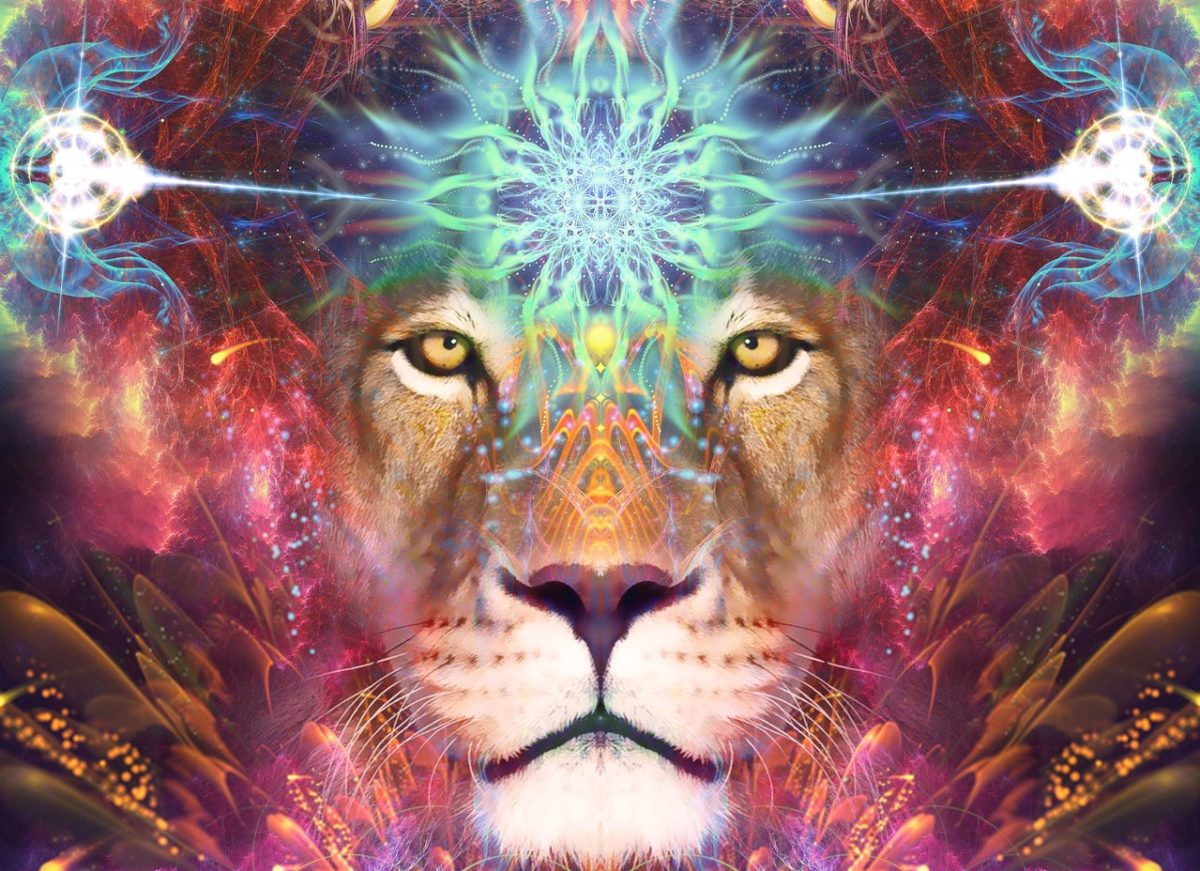Lions Gate Astrology